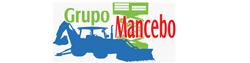 Vendedor: Grupo  Mancebo