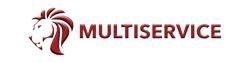 Vendedor: Multiservice srl